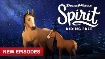 Mustang: Duch wolności (2018)
