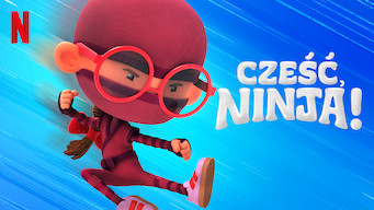 Cześć, ninja! (2019)