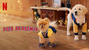 Psia Akademia (2020)