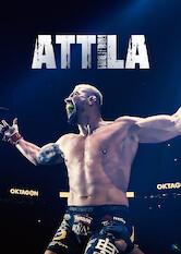 Search netflix Attila